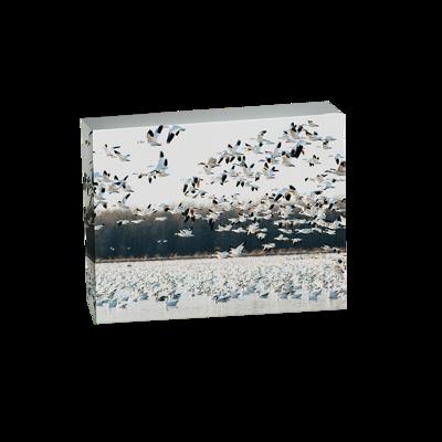 11x14 Horizontal Canvas Wrap