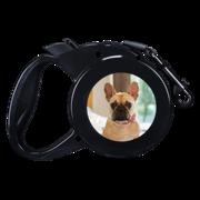 Retractable Pet Leash