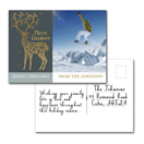 Ens de 12 - Carte postale - H A1