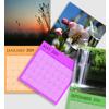12 x 12 - 2019 Light Color BackgroundWall Calendar - 1 picture per page