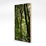 5x10 Bamboo Block (.75'')