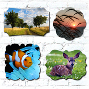 Creative Edge Metal Prints