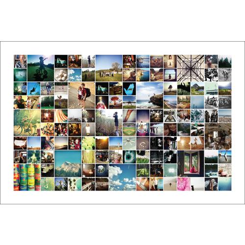 40x60 Collage - White Background