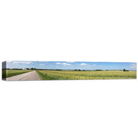 8x36 Canvas - 2.5 Inch Image Wrap