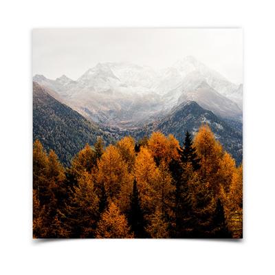 8x8 Borderless Fine Art Print