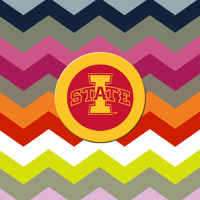 State Medallion Sandstone Coasters