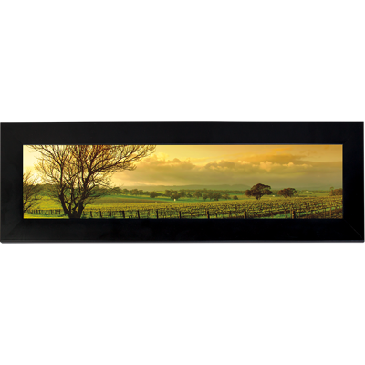 Framed Print 4x12 - H