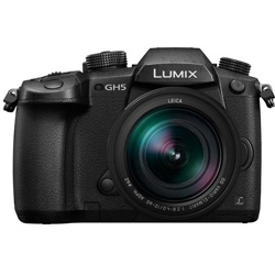 Panasonic-Lumix GH5 Compact System Camera with Leica DG VARIO-ELMARIT 12-60mm F2.8-4 Power OIS Lens-Digital Cameras