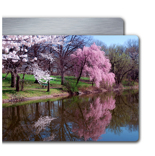 4x12' Single Layer HD Metal Single Image Landscape