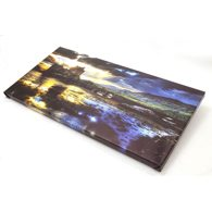 20 x 16 metallic canvas landscape 1.25 deep