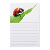 Bloc-notes 6x9 - 50 feuilles