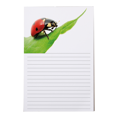 6x9 Notepad - 50 Sheets