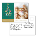 Ens de 12 - Carte postale - H A2