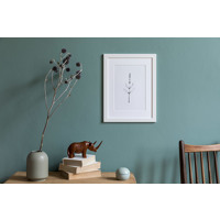 Matted Prints in Frame