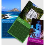 12 x 12 - 2019 Dark Color Background Wall Calendar - 1 picture per page